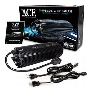 The Ace Electronic Digital Ballast